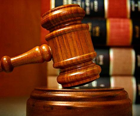 СМИ: Судья Елена Хахалева могла стать жертвой информационной атаки